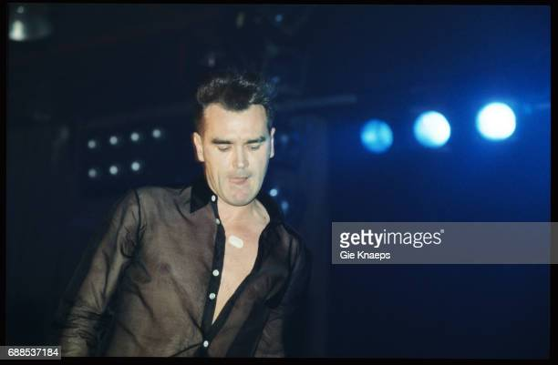 Morrissey Brielpoort Deinze Belgium