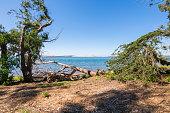 Morro Bay State Park, Morro Bay State Marine Reserve, Los Osos, California, USA