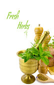 Mortar with fresh herbs and other kitchen objects isolated