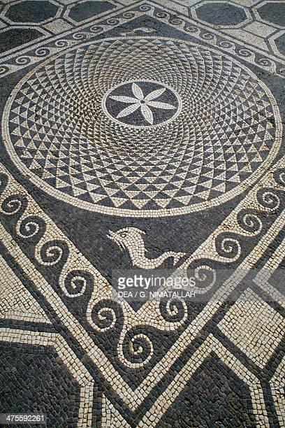Mosaic floor Roman city of Emporiae Catalonia Spain Roman civilisation 1st century