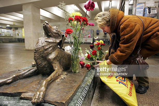A woman puts flowers at the monument to the stray dog Malchik at Mendeleyevskaya metro station in Moscow 18 February 2007 Malchik was killed four...