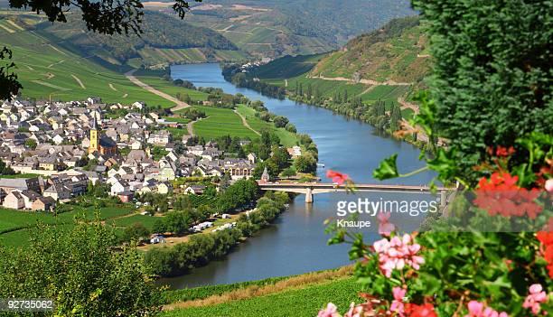 Mosel River Valley mit village in vineyard