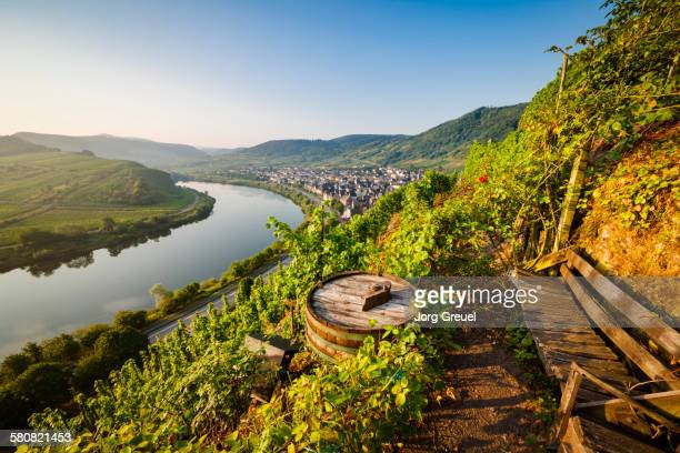 Moselle at sunrise