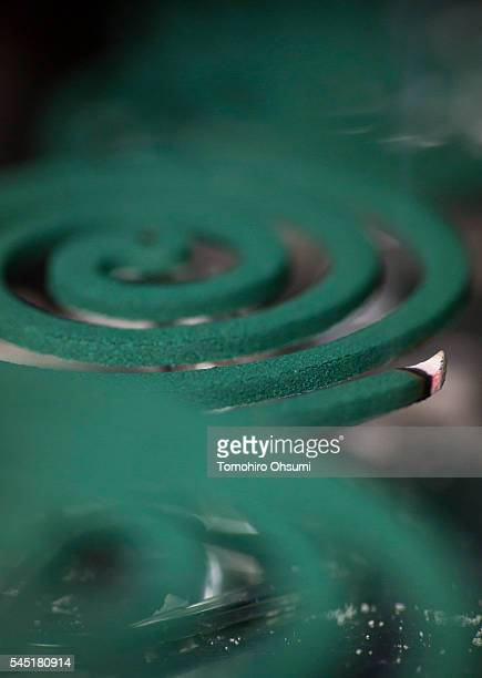 Mosquito coils are inspected in a laboratory at the Kishu Factory of Dainihon Jochugiku Co Ltd on July 6 2016 in Arita Japan Japanese insect...