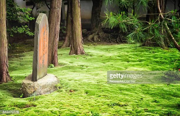 Mousse jardin du temple en pierre portant Tokoji avec vue panoramique