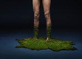 moss growing up of human legs