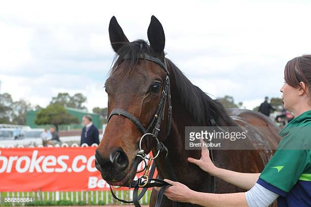 Moss 'n' Dale after winning The Grand Hotel Frankston Hcp at Ladbrokes Park Lakeside Racecourse on August 07 2016 in Springvale Australia