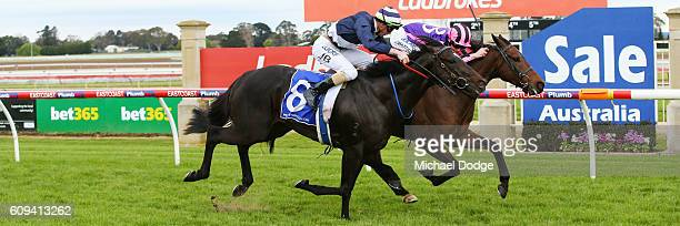 Moss 'n' Dale ridden by Jack Martin wins No 1 Car Wash BM78 Handicap at Sale Racecourse on September 21 2016 in Sale Australia