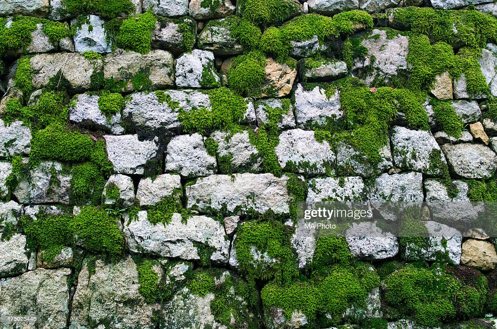 Mossed Stone Wall