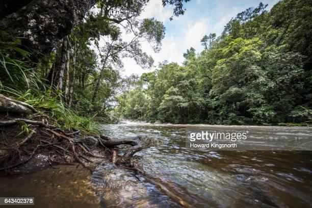 Mossman Riverside, Mossman Gorge