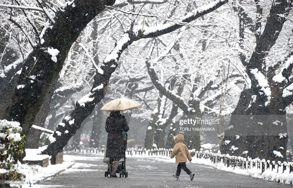 A mother and a child walk under snow covered trees at a park in Tokyo on February 14, 2014. Heavy winter weather is expected to hit Tokyo's metropolitan area again, bringing with it an estimated 10cm of snow. AFP PHOTO/Toru YAMANAKA