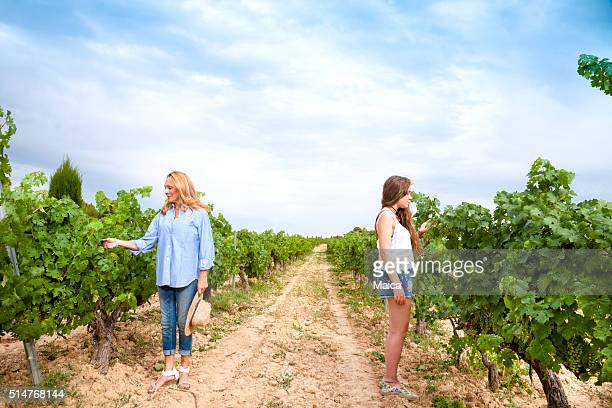 Mother and adul daugther couple harvesting grapes