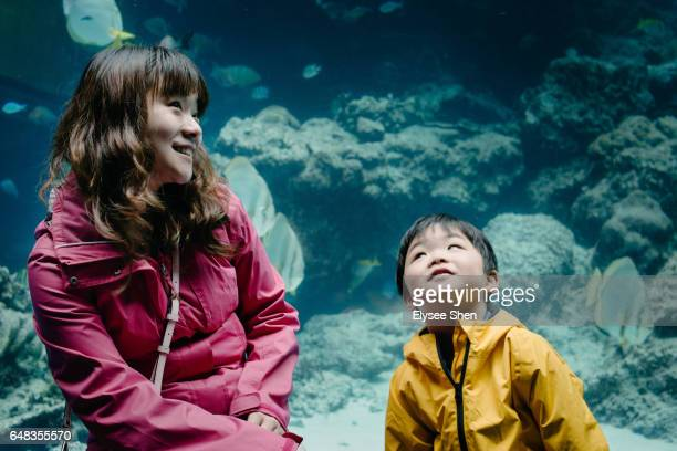 Mother and boy sit up and explore the aquarium