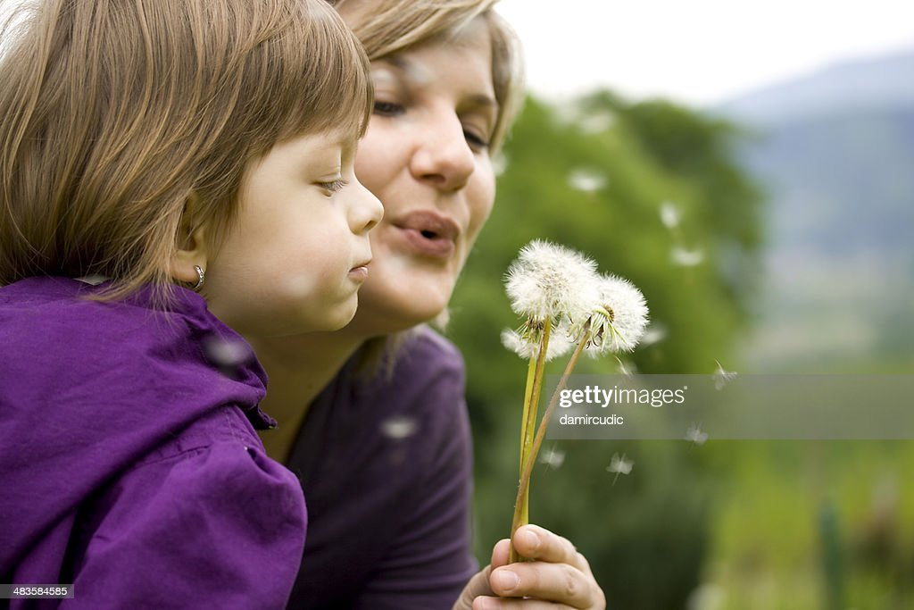 Mother and child blowing dandelion : Stock Photo