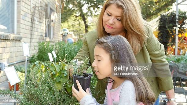 Mutter und Kind shopping für Pflanzen, Kräutern und Gemüse