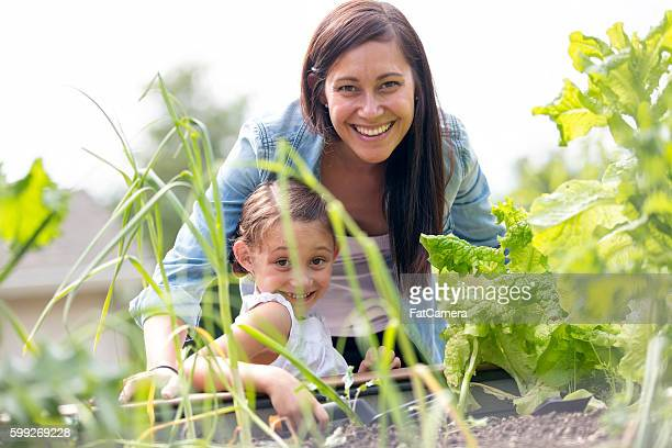 Madre e figlia giardinaggio insieme e piantare Godetevi all'aperto