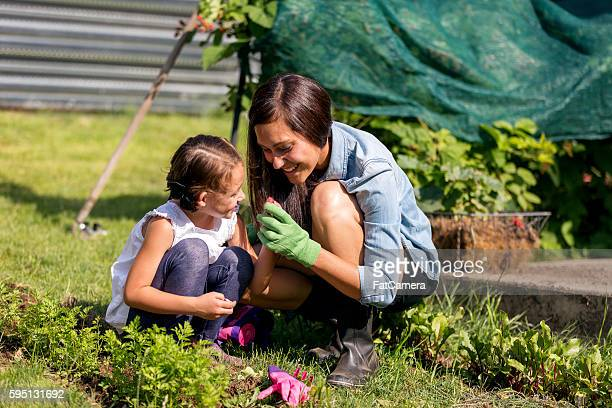 Mother and daughter gardening and planting together outdoors