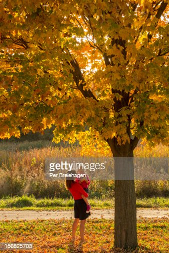 Mother and daughter  in fall leaves : Stock Photo
