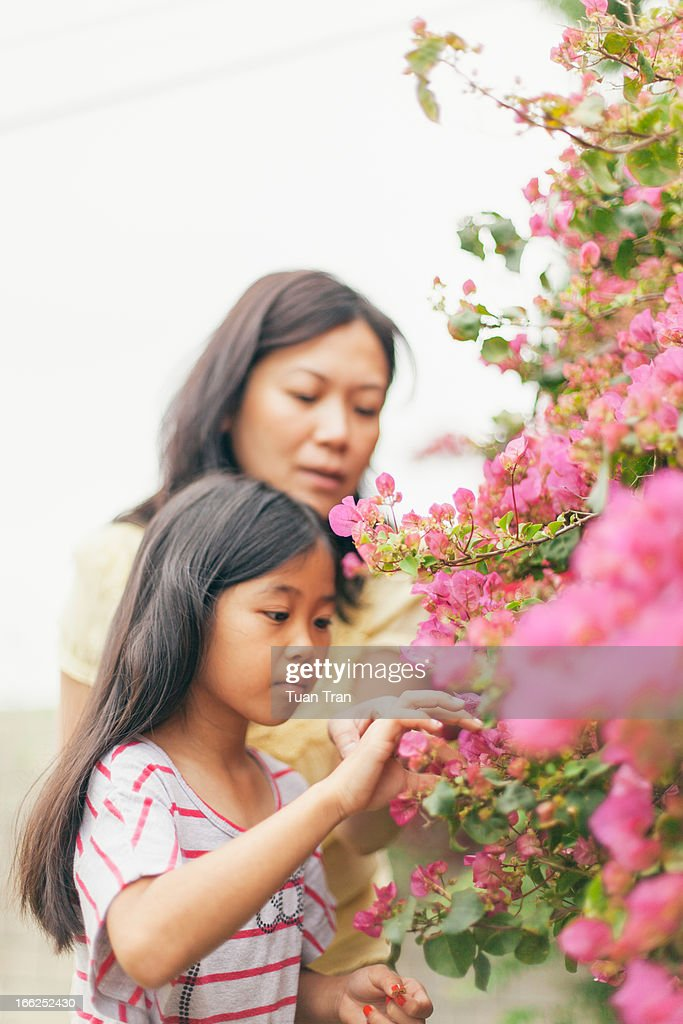 Mother and daughter looking at flowers : Stock Photo