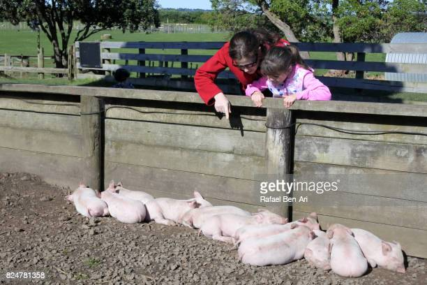 Mother and daughter looks at piglets