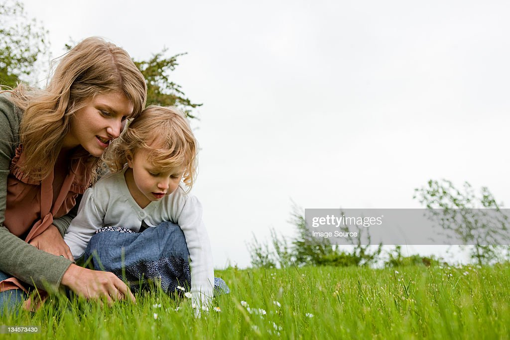 Mother and daughter picking daisies : Stock Photo