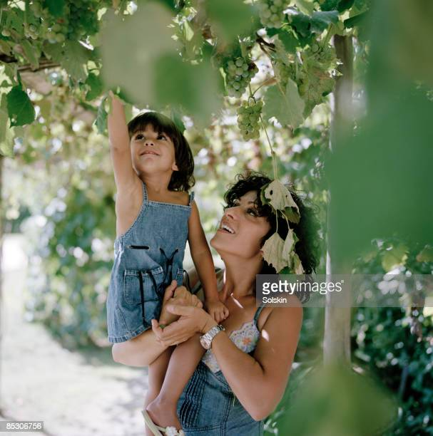 Mother and daughter picking grapes