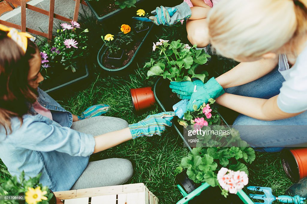 Mother And Daughter Planting Flowers Together. : Stockfoto