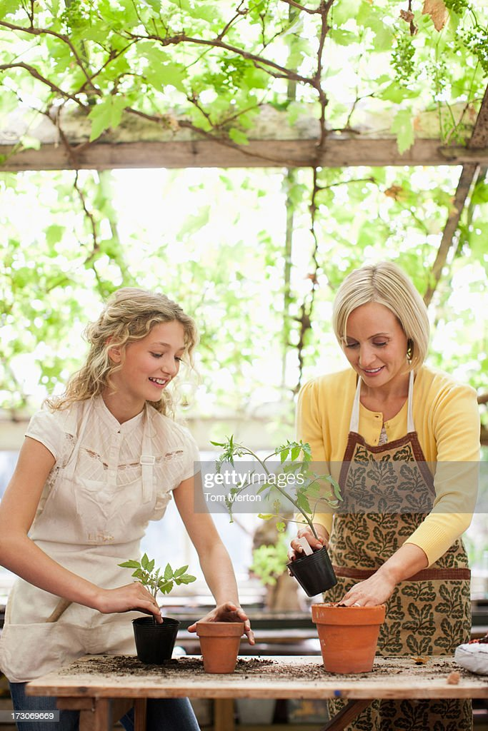 Mother and daughter planting seedlings in ceramic flower pot : Stock Photo