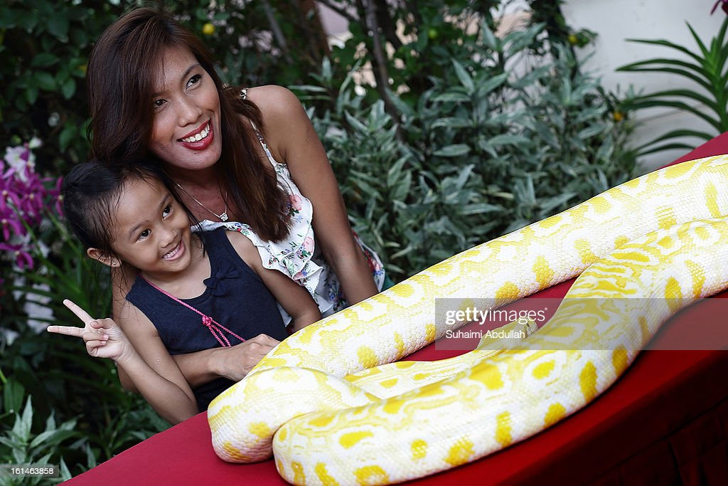 A mother and daughter pose for a photograph with a snake at the Sentosa Flowers exhibition at Palawan Beach on February 11, 2013 in Singapore. Millions of spring flowers decorate the island in celebration of the Chinese New Year, the year of the Snake.