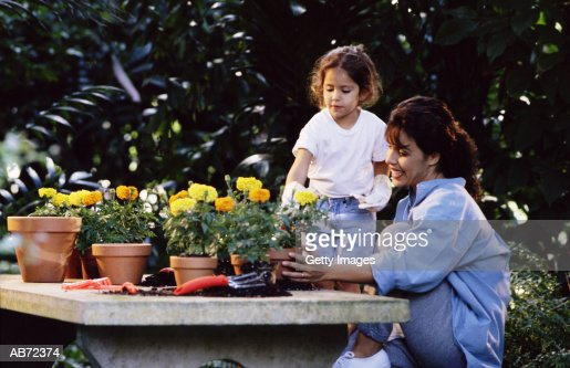 Mother and daughter (4-6) potting plants in garden : Stock Photo