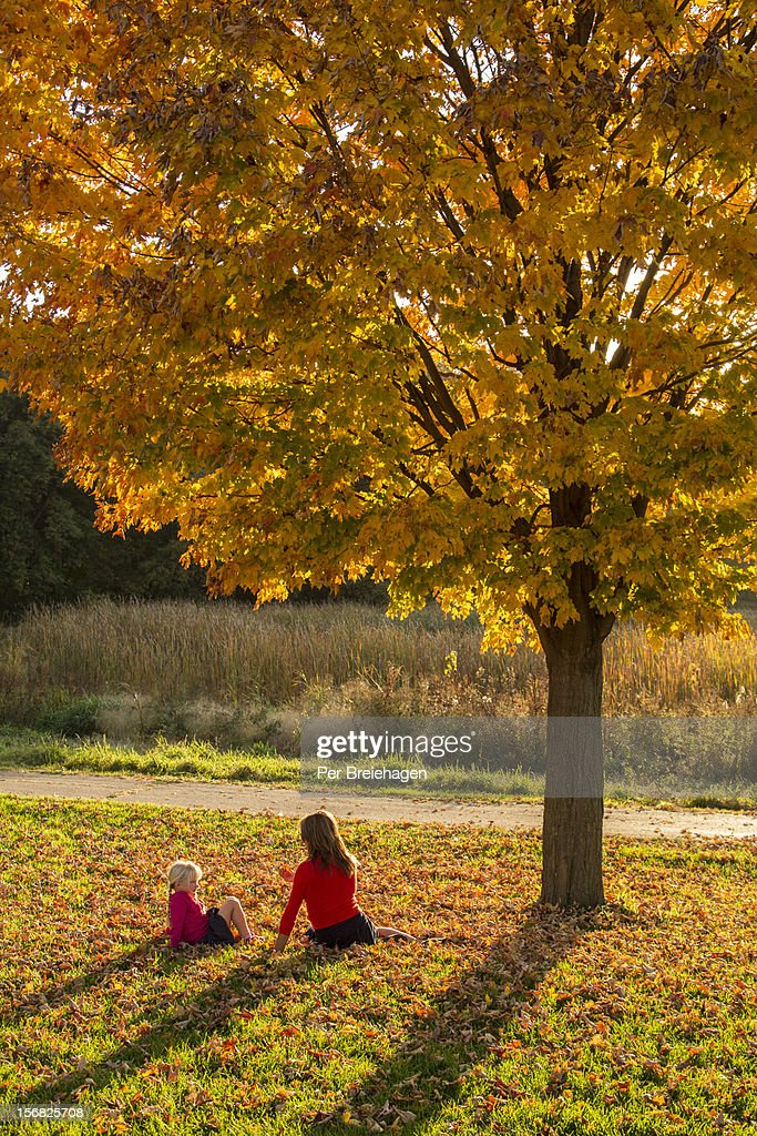 Mother and daughter sitting in fall leaves : Stock Photo