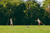 Mother and daughter throwing flying disk to small funny dog, which catching it on the green grass. Little Jack Russel Terrier playing outdoors in park. Dog and women. Family resting on open air