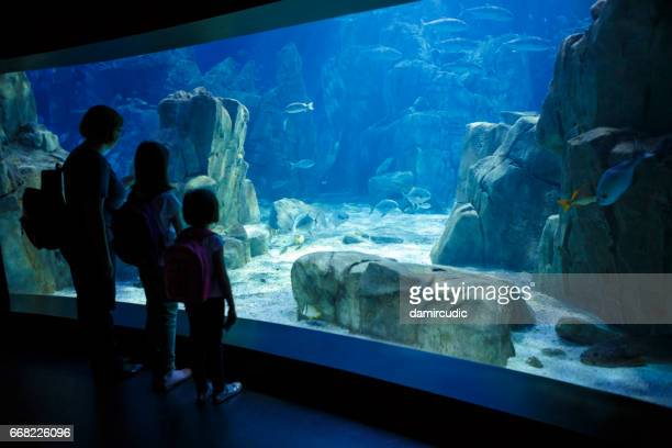 Mother and daughters looking at the fish in a big aquarium