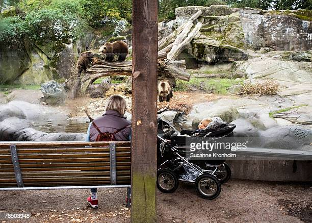A mother and her baby looking at the bears at Skansen in Stockholm.