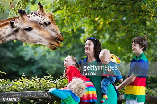 Mother and kids feeding giraffe : Stock Photo