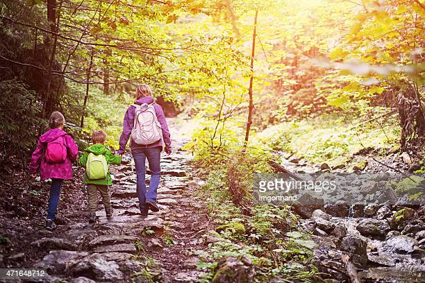 Mother and kids hiking in beautiful sunny forest