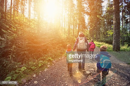 Mother and kids hiking in sunny forest : Stock Photo