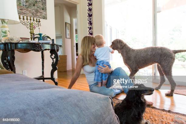 Mother and Toddler with Dogs
