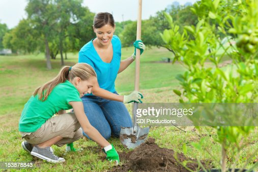 Mom and little girl planting orange tree in park: conservation : Stock Photo