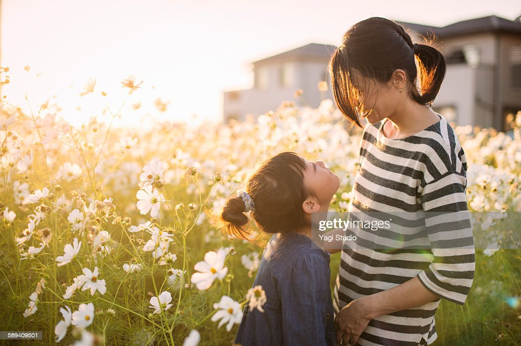 Mother and daughter are in the cosmos field : Stock Photo
