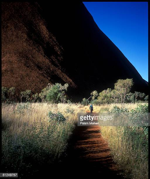 A mother carrying her baby in her backpack walks on one of many walking tracks on the base of Uluru the sacred home for thousands of years of the...