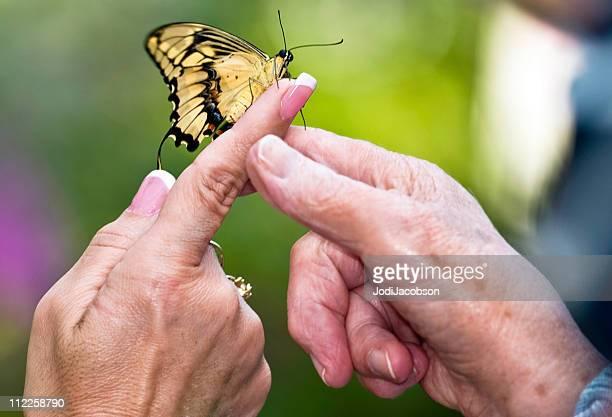 Mère et fille mains tenant un papillon