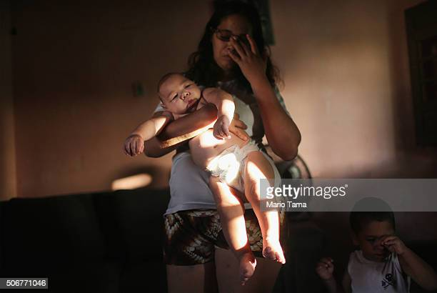 Mother Mylene Helena Ferreira holds her son David Henrique 5 months who has microcephaly on January 25 2016 in Recife Brazil In the last four months...