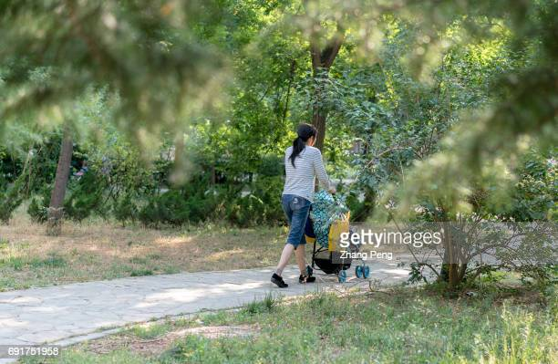 A mother pushes a baby car walking in pathway through woods According to a latest official survey by AllChina Women's Federation only 205% Chinese...