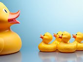 Mother rubber duck and several rubber ducklings