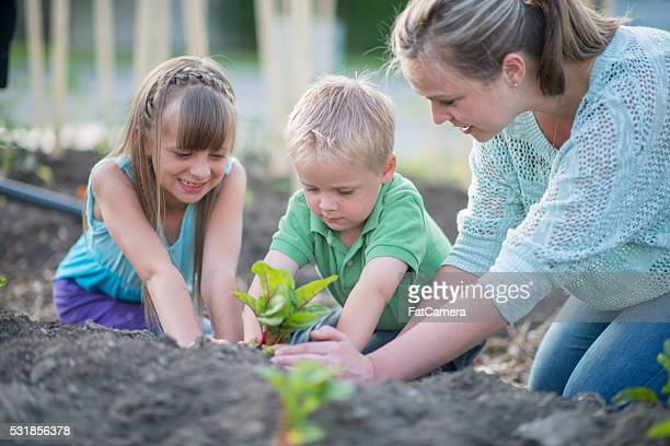 Mãe ensinando seus filhos como jardim