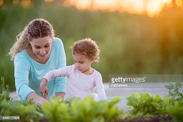 Mother Teaching Her Daughter How to Garden