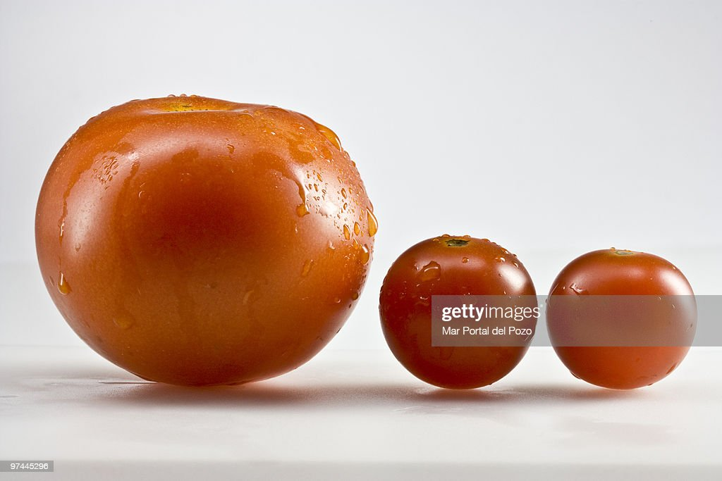 Mother tomato and sons : Stock Photo