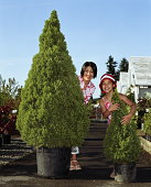 Mother with daughter (8-10) standing behind potted trees at nursery