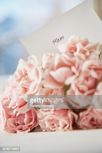 Mother's Day Roses : Bildbanksbilder